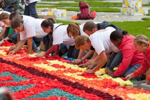 voluntarios-colocando-flores-alfombra-floral-grand-place-bruselas