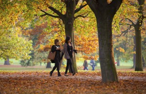 London, UK - October 31, 2015: Young girls walking in autumn's park and enjoying the nature