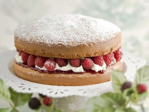 Victoria sponge cake filled with fresh whipped cream, rasberries and jam on white platter. Leafy foiage in the background and foreground out of focus. Shallow depth of field